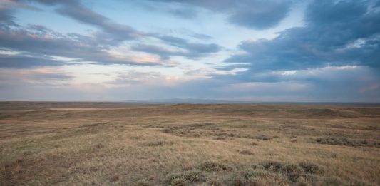 Northern Grasslands - Great Plains
