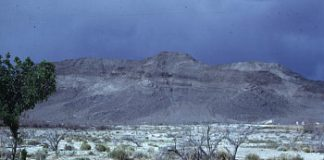 Ash Meadows Nevada
