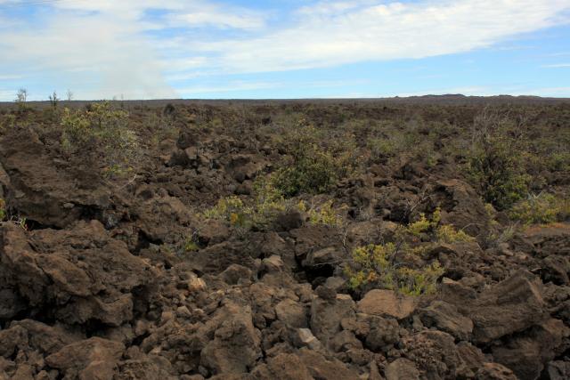 Ka'u Desert Hawai'i
