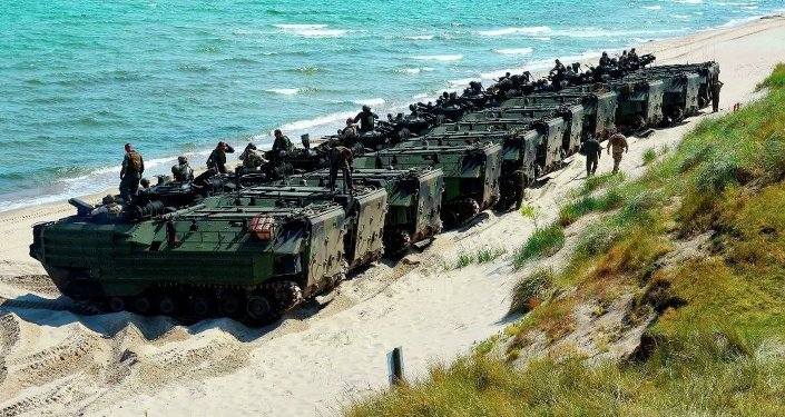 Europeans shun militarization – see terrorism, not Russia as biggest threat – Pew poll