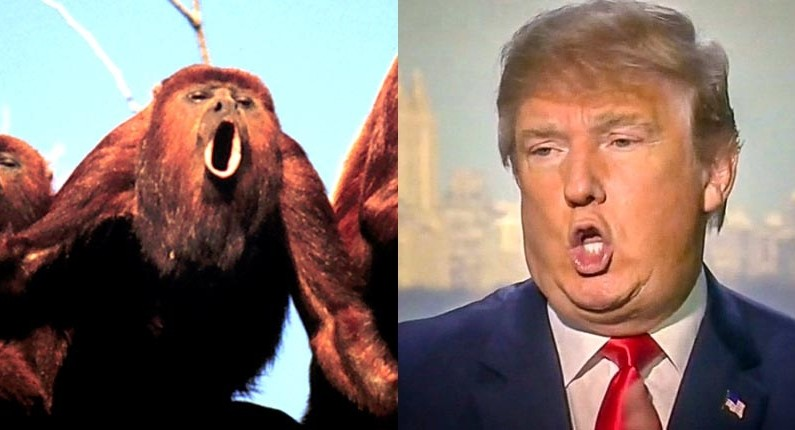 "TRUTH JIHAD: Is Trump ""an organ-grinder's monkey shilling for Hillary""?"