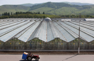 A farm worker drives a tractor past greenhouses used to grow vegetables at the Yuzhny Agricultural Complex, operated by AFK Sistema, in Ust-Dzheguta, Russia, on Wednesday, May 18, 2016. XXX ADD SECOND SENTENCE HERE XXX. Photographer: Andrey Rudakov/Bloomberg