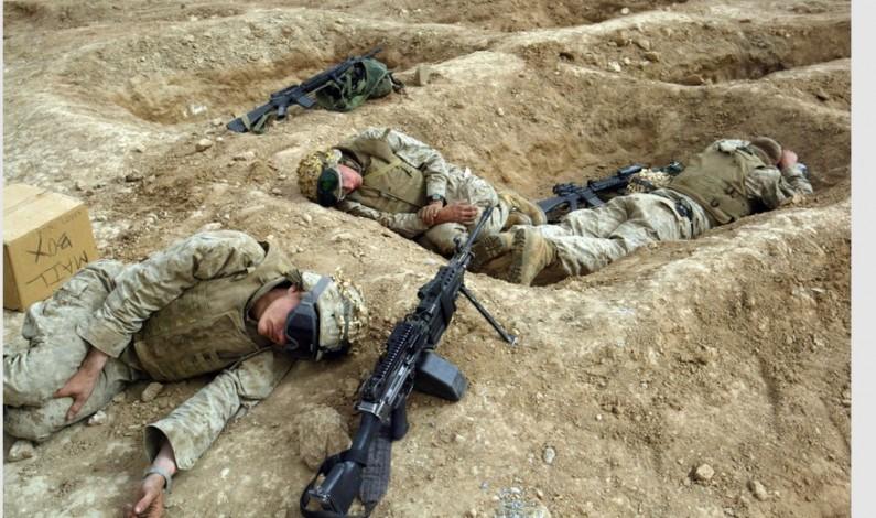 Fallujah 'fully liberated, battle over'