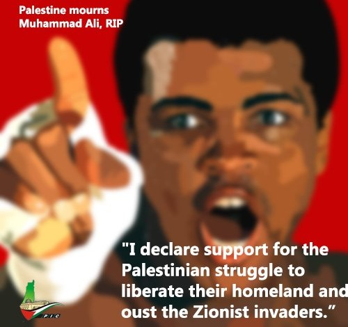 Muhammad Ali: I declare support for the Palestinian liberation struggle – MSM won't report it