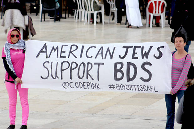 The One Thing I Really Like about BDS