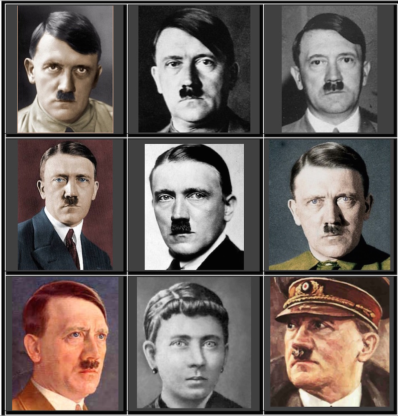 Hitler fact or fiction effects of
