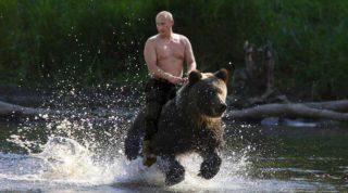 putin-rides-a-bear