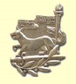 Samson Foxes pin