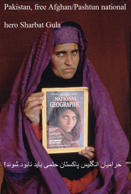 "NATIONAL GEOGRAPHIC VIDEO/DVD: ""SEARCH FOR THE AFGHAN GIRL"" © Steve McCurry"