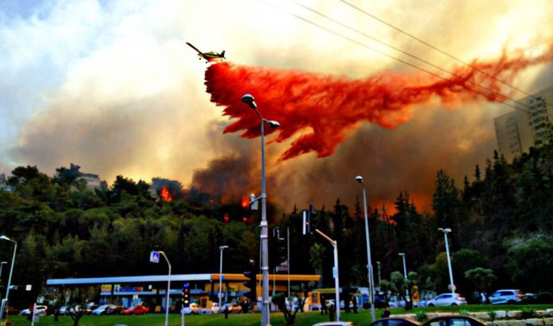 Israeli PM stance on wildfire racist, provocative : Arab MPs