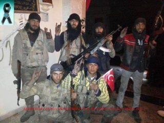 Turkish Grey Wolves