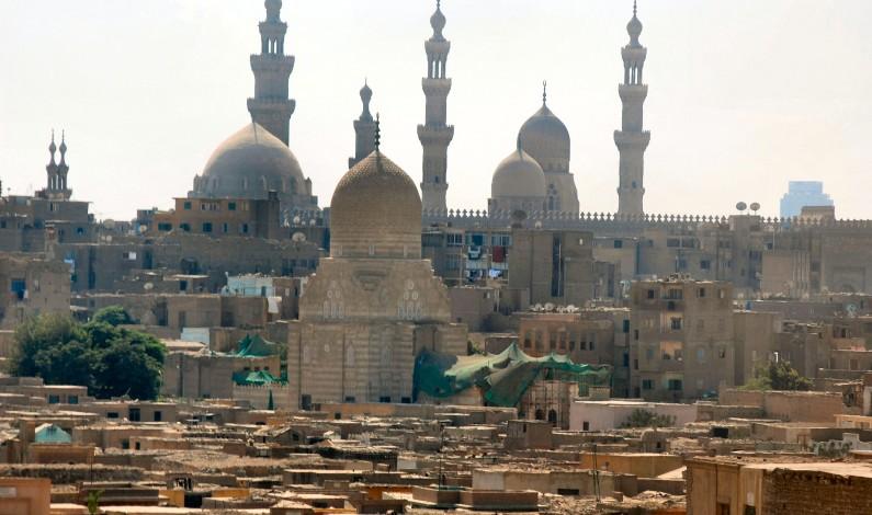 BBC: Egypt arrests 'organ trafficking ring'
