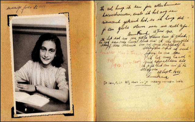 the diary of anne frank book review essay