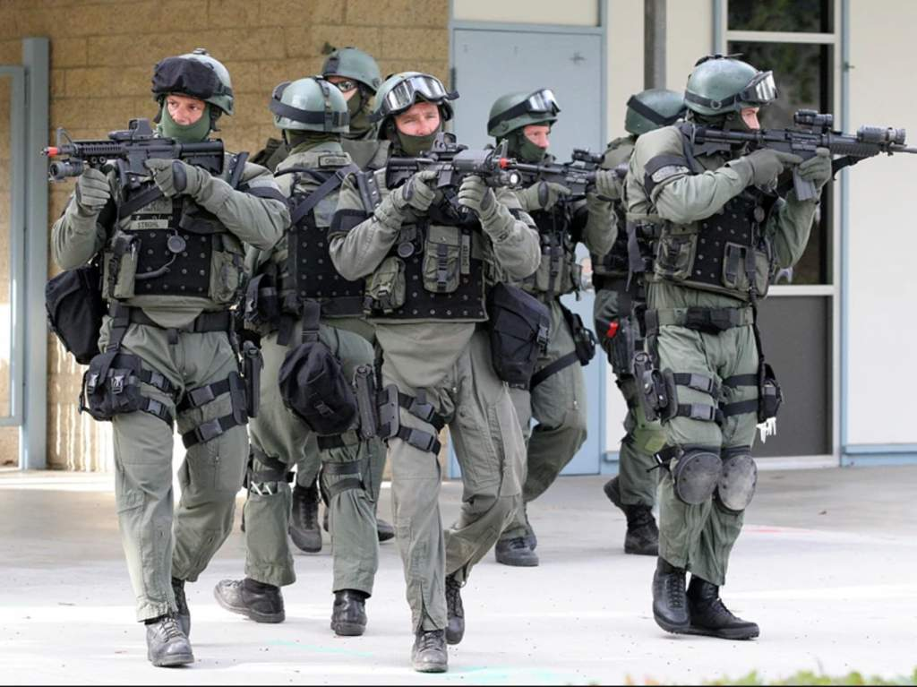 Pentagon Snared in Government Sting as Fake Cops Acquire