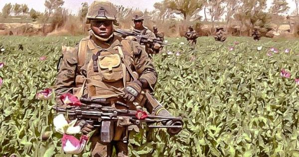 Fighting drugs, the most forgotten in new US Afghan strategy