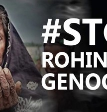 Why won't the international community stop the Rohingya genocide?