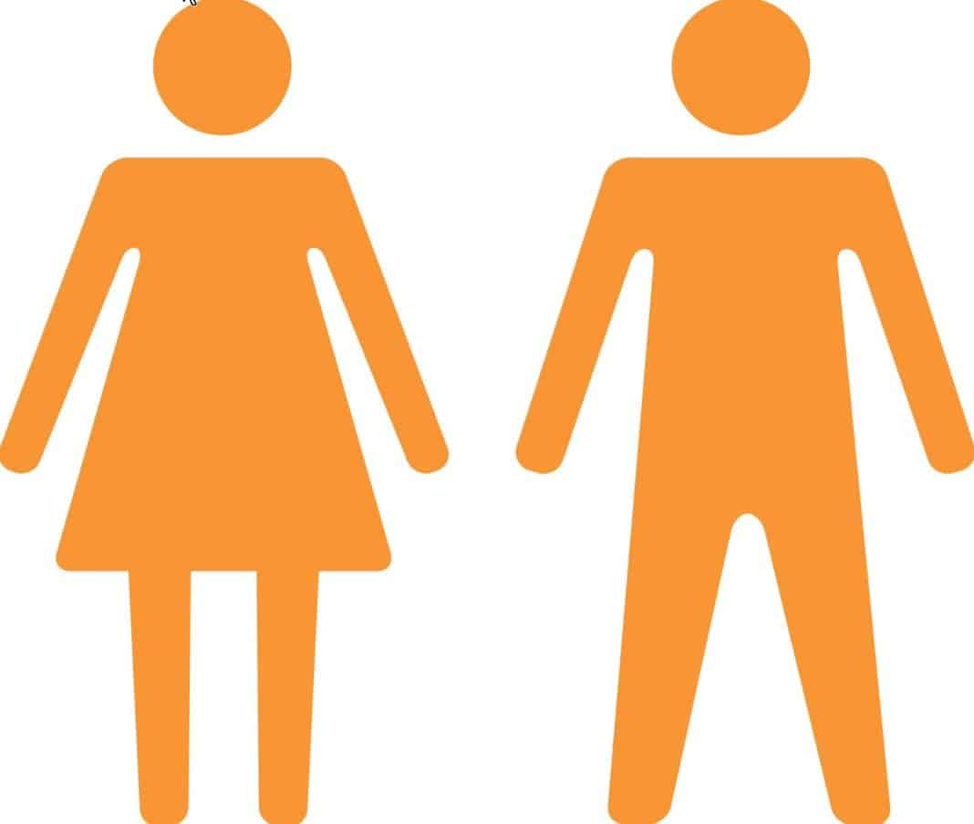 social gender Gender definition, either the male or female division of a species, especially as differentiated by social and cultural roles and behavior: the feminine gender see more.