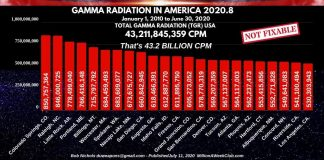 GAMMA RADIATION IN AMERICA - 2020-8