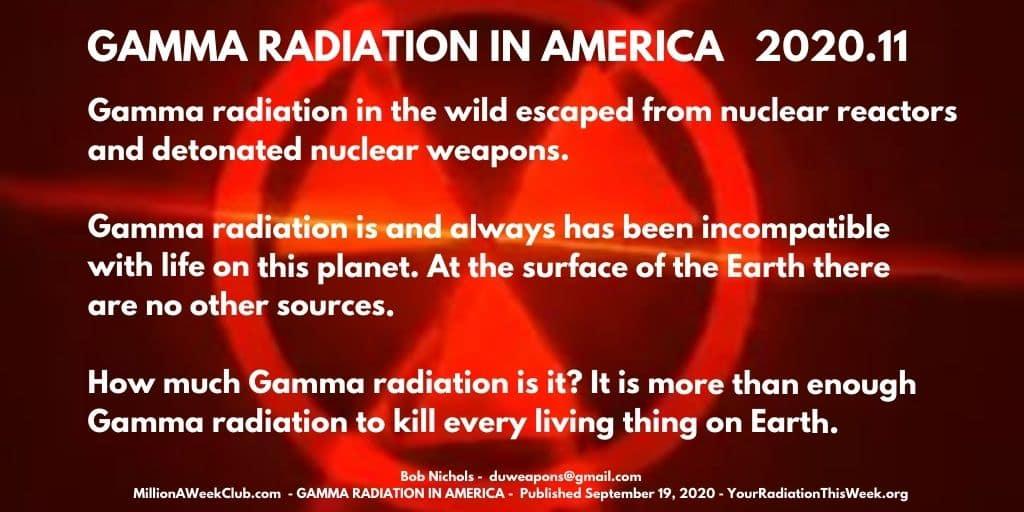 GAMMA RADIATION IN AMERICA 2020.11