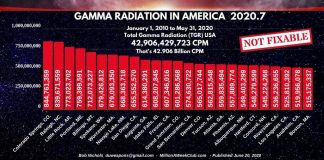 GAMMA RADIATION IN AMERICA - 2020-7(1)