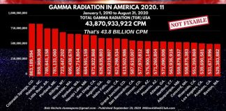 Gamma Radiation in America - 2020-11