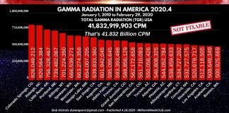 GAMMA RADIATION IN AMERICA 2020.-4
